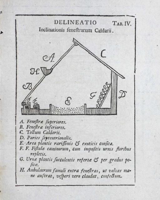 Caldario Linneo1745